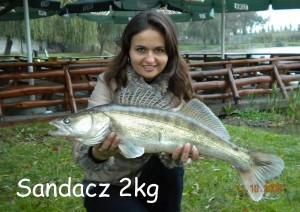 Sandacz 2 kg